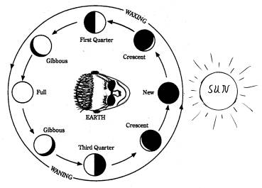 search results for print moon phase worksheet calendar 2015. Black Bedroom Furniture Sets. Home Design Ideas